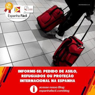 novo-blogEF2-0708